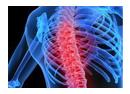 A gerinc betegségek bántalmak